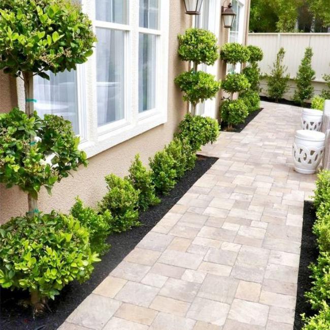paving bock texture untuk halaman rumah
