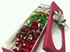 12 Jenis Bunga dengan Makna Paling Romantis