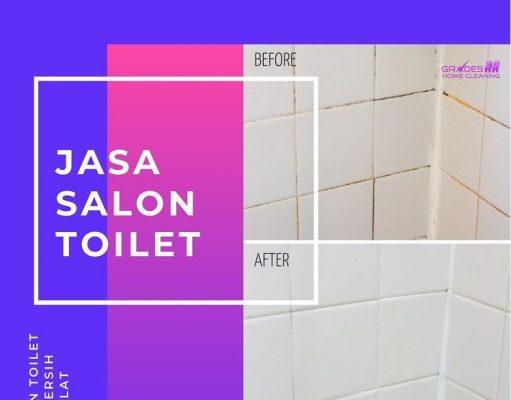 salon toilet